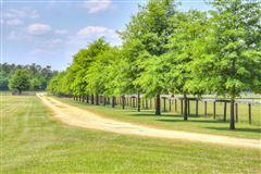 Lovely horse farm luxury real estate