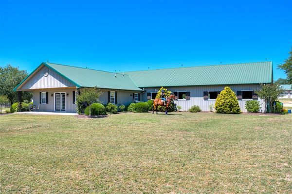 Luxury homes Lovely horse farm