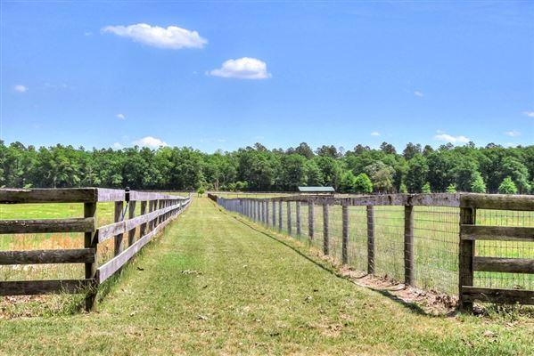 Luxury homes in Lovely horse farm