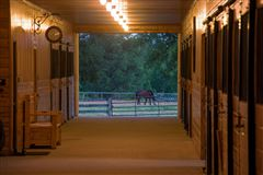 Mansions in Lovely horse farm