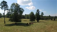 Dream acreage for your southern country retreat luxury properties