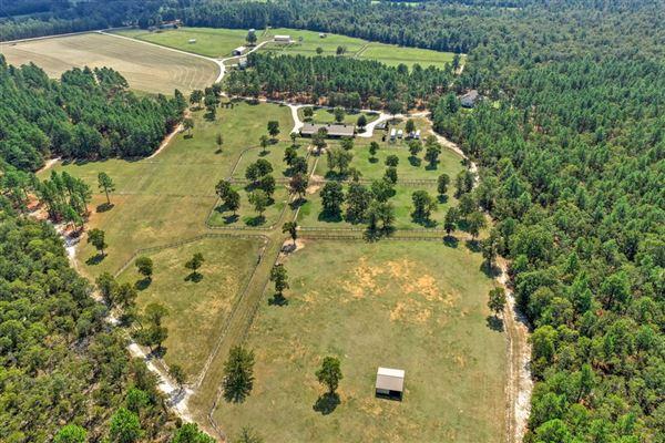 Katydid Farm luxury real estate