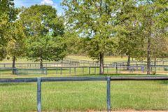 Katydid Farm luxury homes