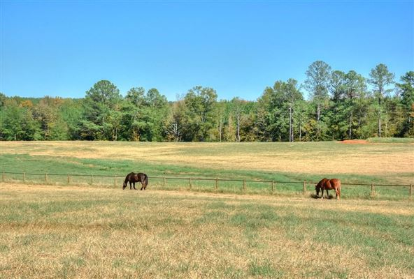 142-plus acre farm with three custom homes luxury homes