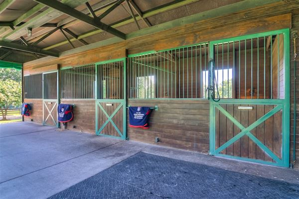Luxury properties  turnkey equestrian property