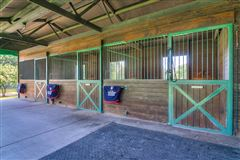 Luxury homes  turnkey equestrian property