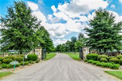 Luxury real estate equestrian paradise