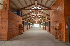 Luxury homes equestrian paradise