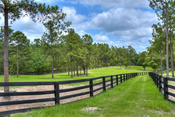 An equestrian paradise on 14 acres mansions