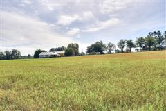 Luxury properties Beautiful farm property includes a guest house