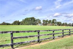 Luxury homes Beautiful farm property includes a guest house