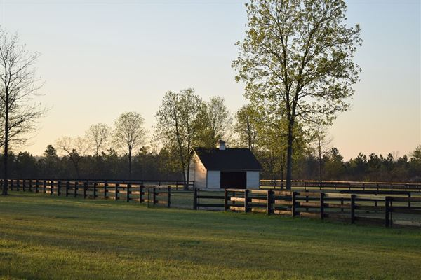 Mansions private equestrian estate