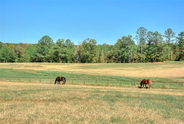 Luxury properties 142-plus-acre ranch