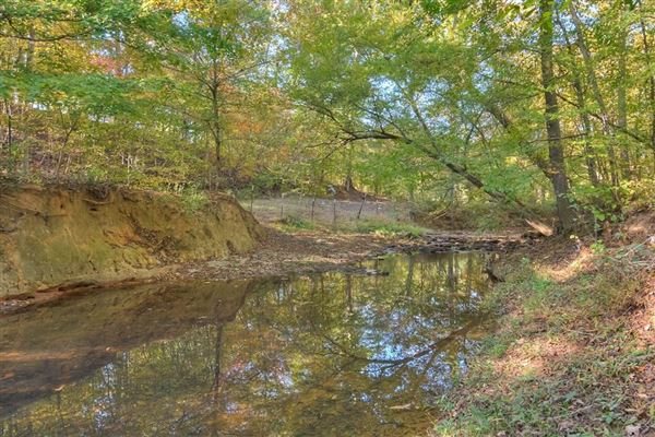 Luxury homes in 142-plus-acre ranch