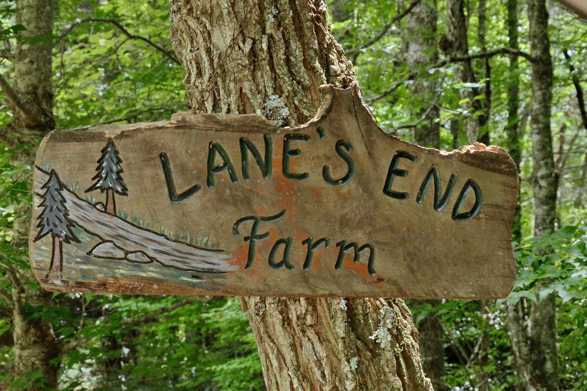 Lanes End Farm North Carolina Luxury Homes Mansions