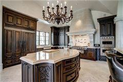 Magnificent estate on almost six acres in Atlanta Georgia mansions