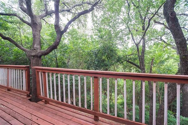 Luxury properties cedar home on treed lot in eanes