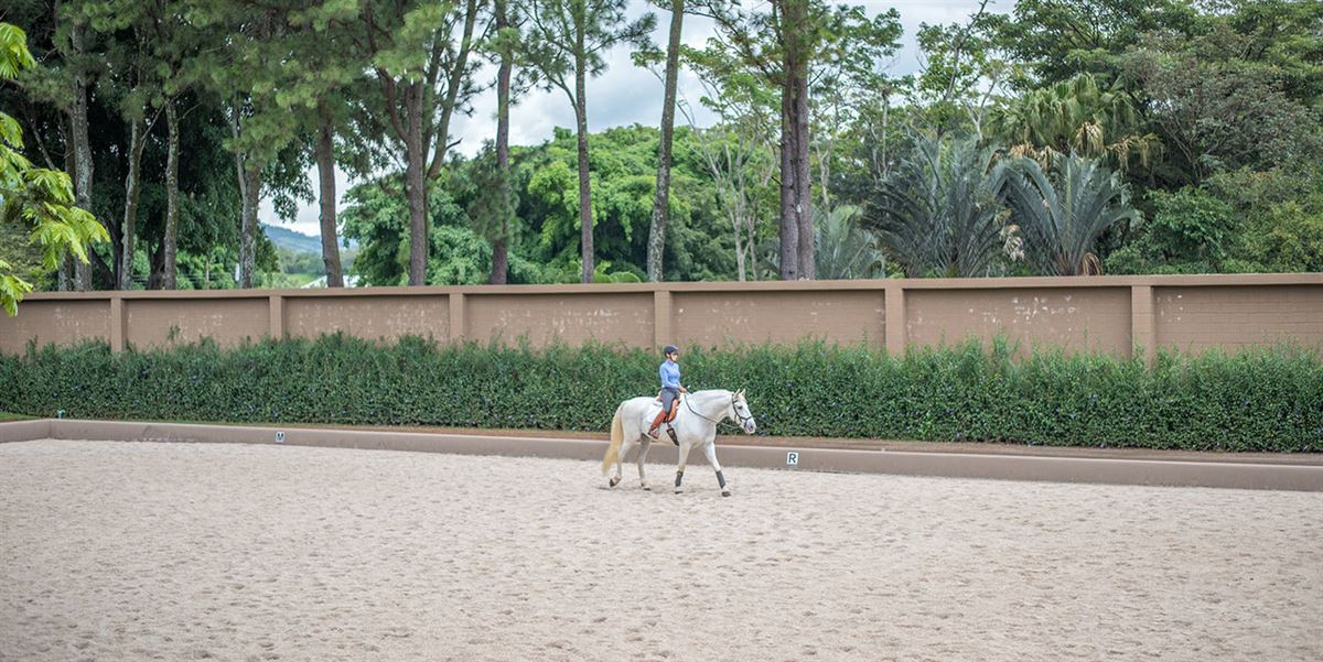 Cortijo Equestrian Estate in Costa Rica mansions