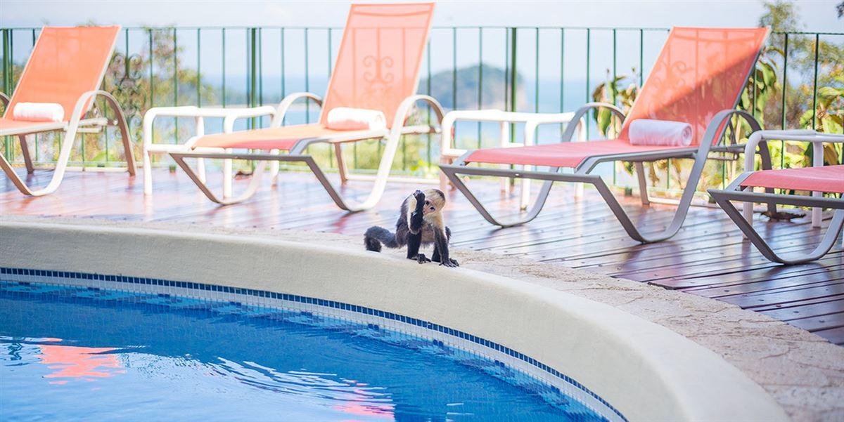 Luxury real estate Elegant Beach Estate Located in Manuel Antonio