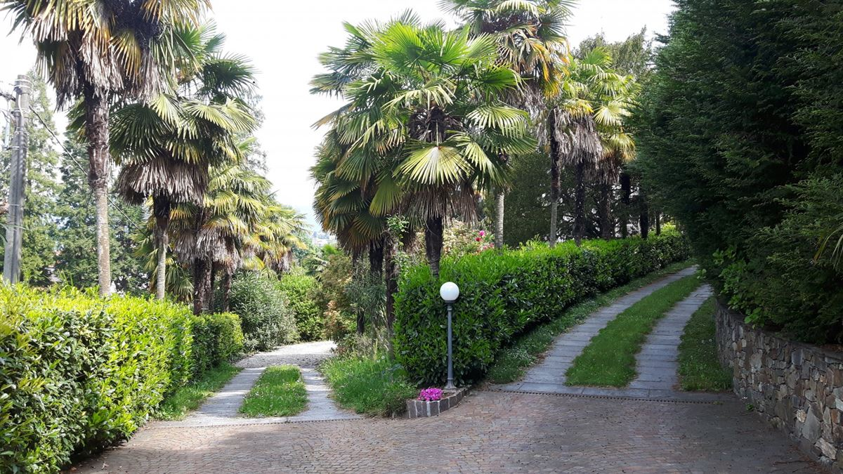 Luxury homes splendid fully renovated villa