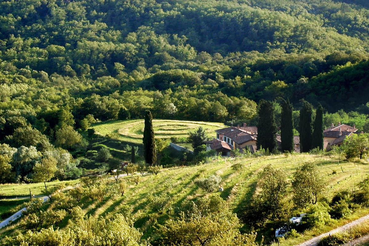 Mansions in organic farm with great accommodation
