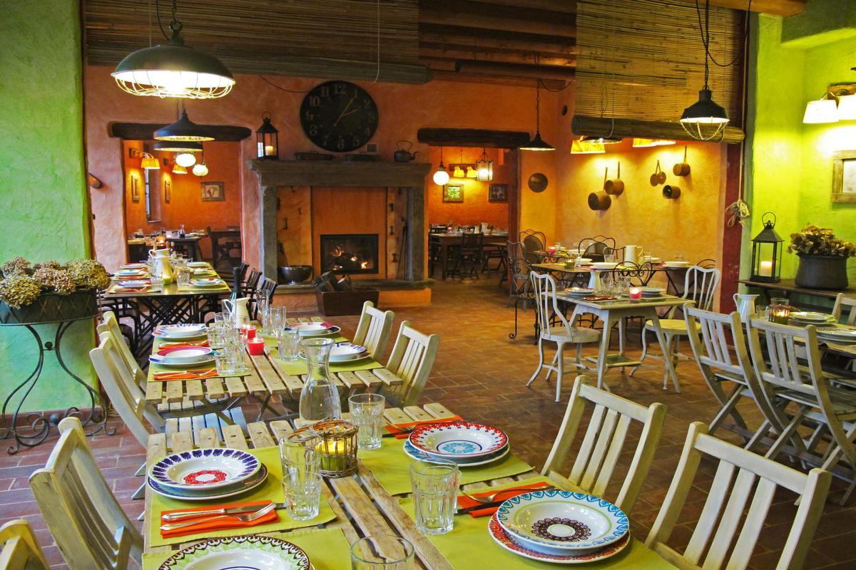 Luxury properties organic farm with great accommodation