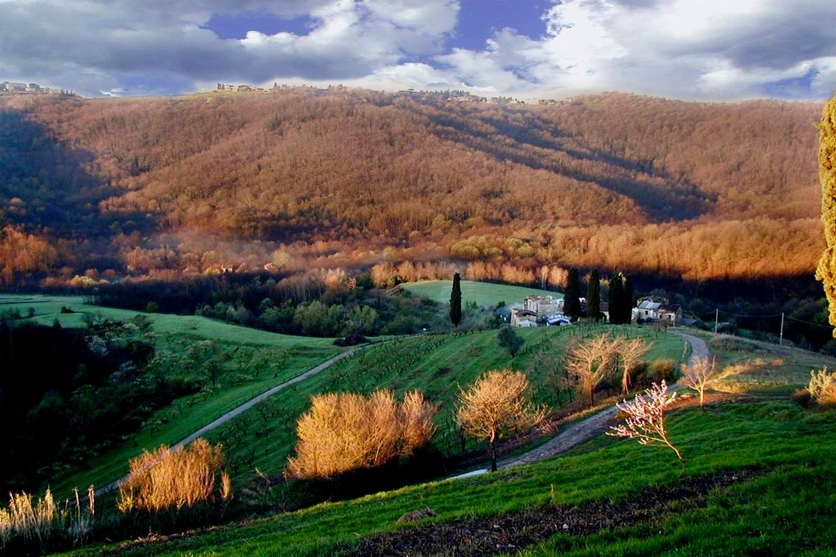 organic farm with great accommodation mansions