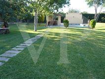 Luxury homes Wonderful Majorcan finca in Pollensa
