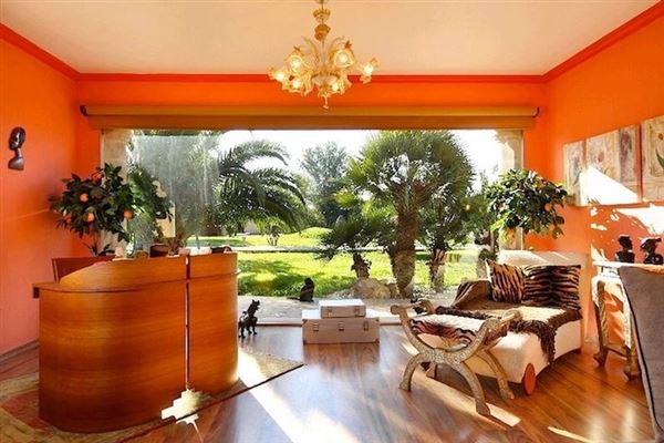 Wonderful Majorcan finca in Pollensa  luxury homes