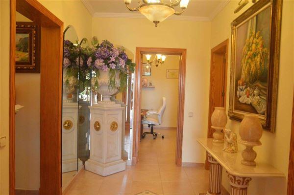 Luxury real estate Spacious and charming villa near Palma