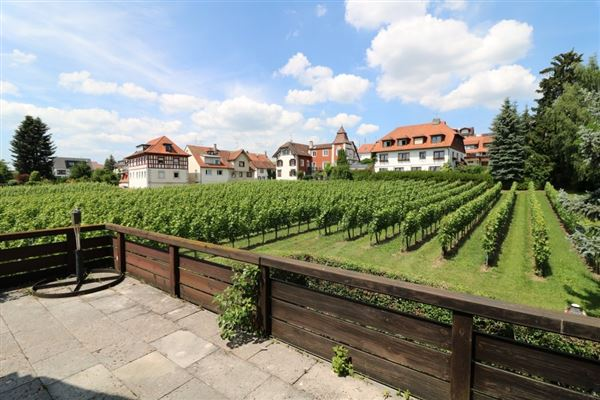 Luxury homes exclusive mansion in hagnau