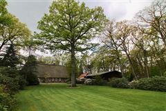 Luxury homes in historic versatile property