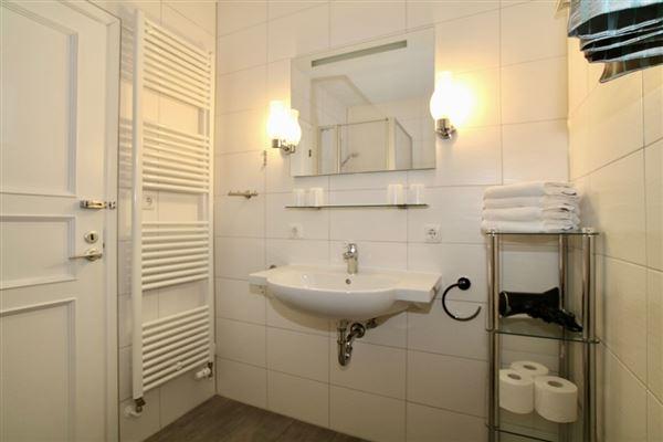 Luxury real estate historic versatile property