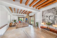 Luxury homes in enjoy exclusive comfort under the mallorcan sun