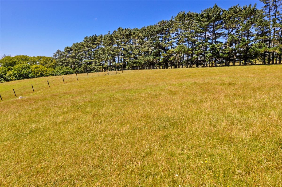 Expansive property in the Countryside of Kumeu luxury real estate
