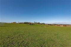 Luxury homes in Approx 51 acres prime land in the heart of Dairy Flat, bordering the North Shore Aeropark and North Shore Aero Clu