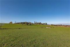 Luxury homes Approx 51 acres prime land in the heart of Dairy Flat, bordering the North Shore Aeropark and North Shore Aero Clu