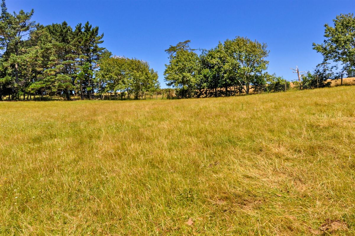 Luxury homes in Expansive property in the Countryside of Kumeu