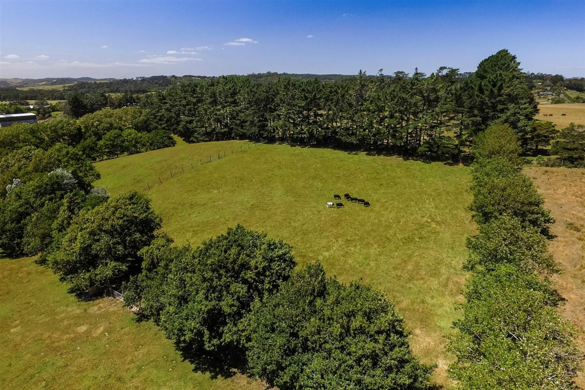 Mansions in Expansive property in the Countryside of Kumeu