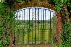 Luxury homes in The Walled Garden