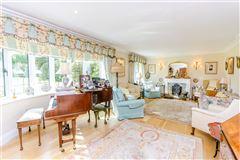 Little Danley luxury real estate