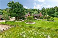 Luxury homes in an attractive and spacious property beautifully sited