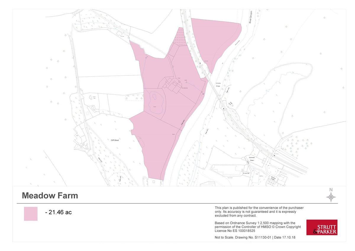 Mansions Meadow Farm