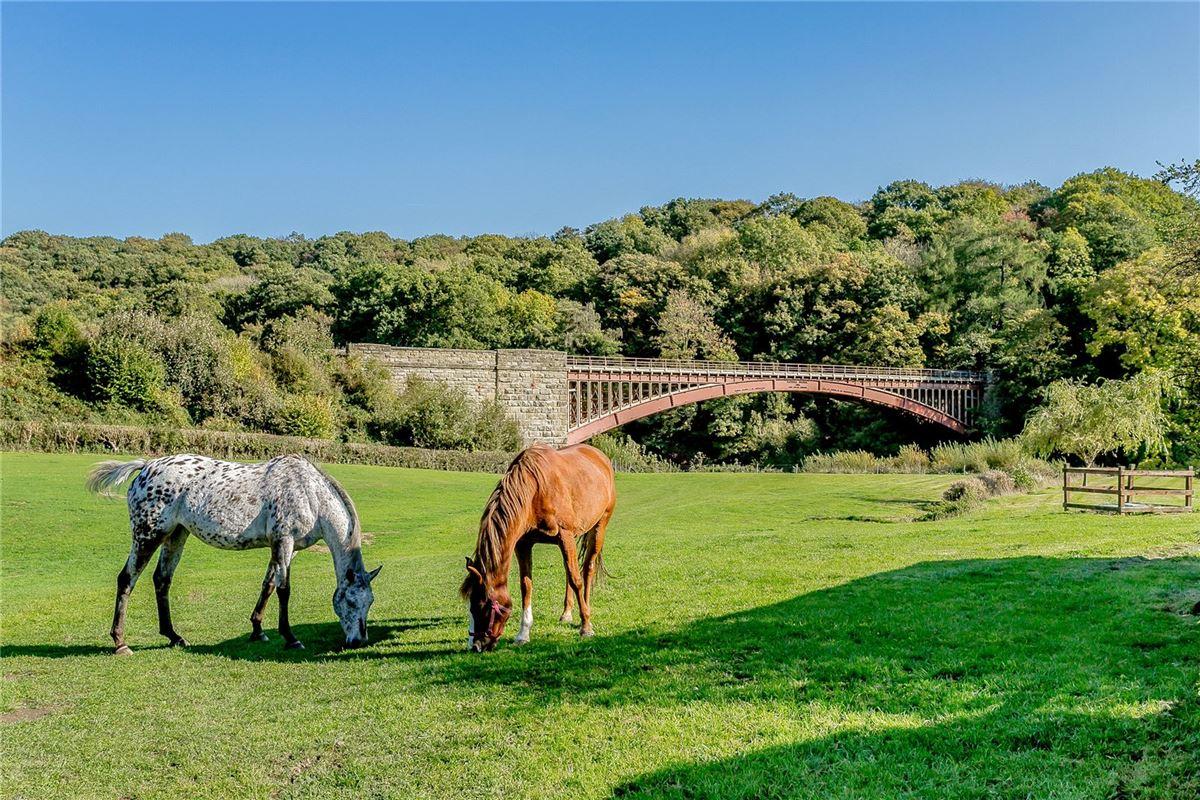 Meadow Farm luxury real estate