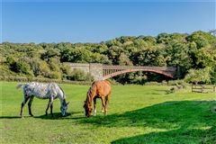 Luxury real estate Meadow Farm