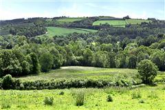 Luxury properties Golland Farm