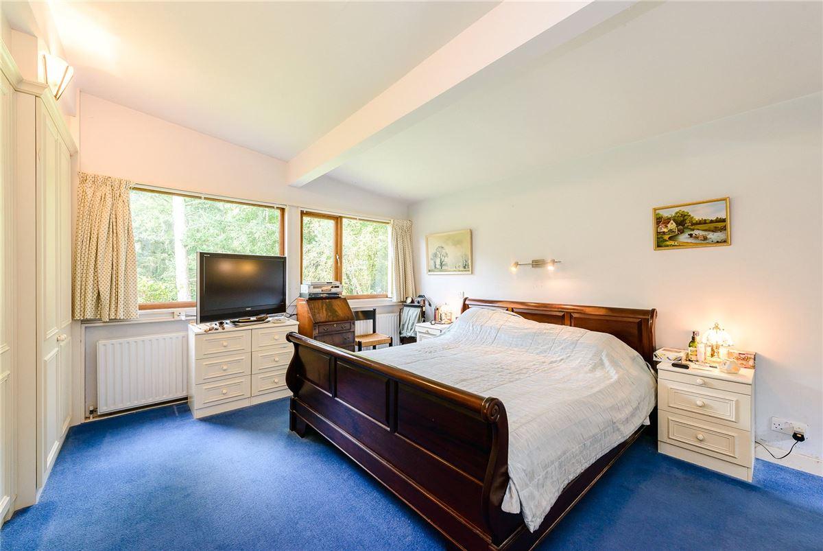 Luxury properties peaceful woodland setting in beaulieu