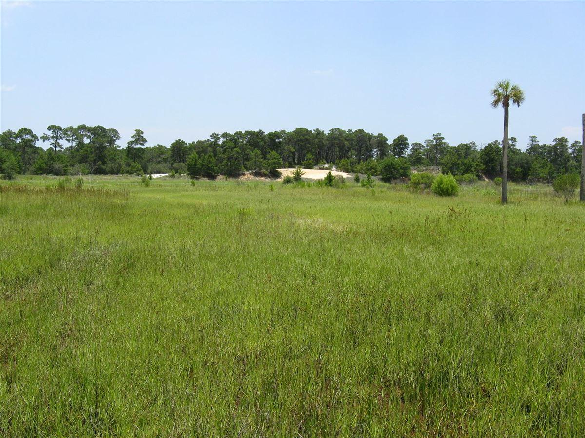 Mansions build a huge private estate