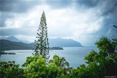 tranquil oasis high above Kaneohe Bay mansions
