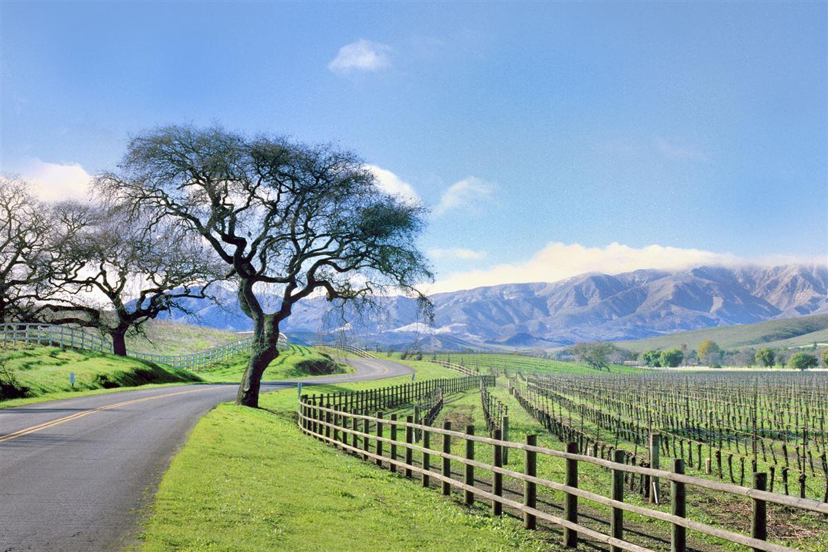 AWARD-WINNING Vogelzang Vineyard luxury real estate